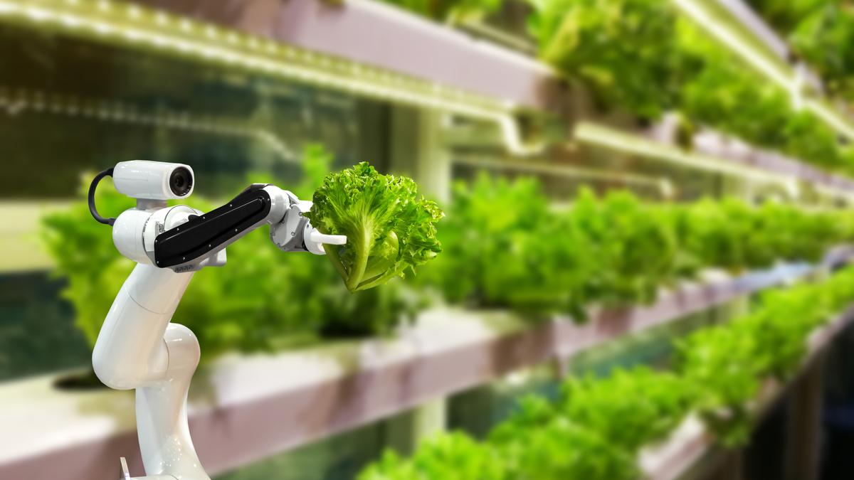https://agroekoteknologi.unja.ac.id/wp-content/uploads/2021/10/agroekoteknologi2.jpg